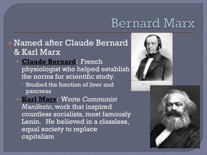 Bernard Marx