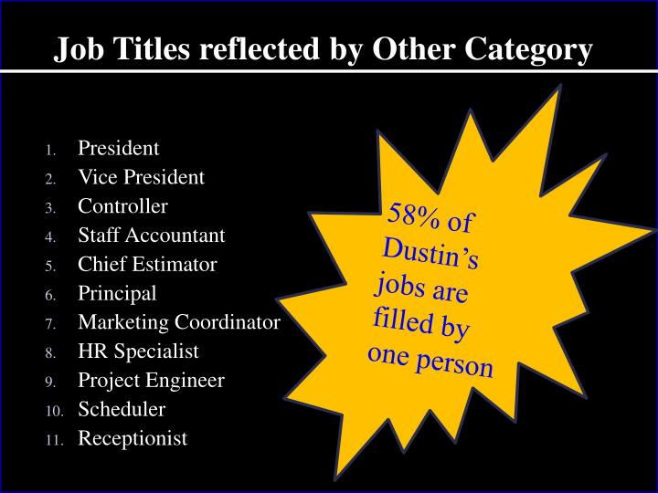 Job Titles reflected by Other Category