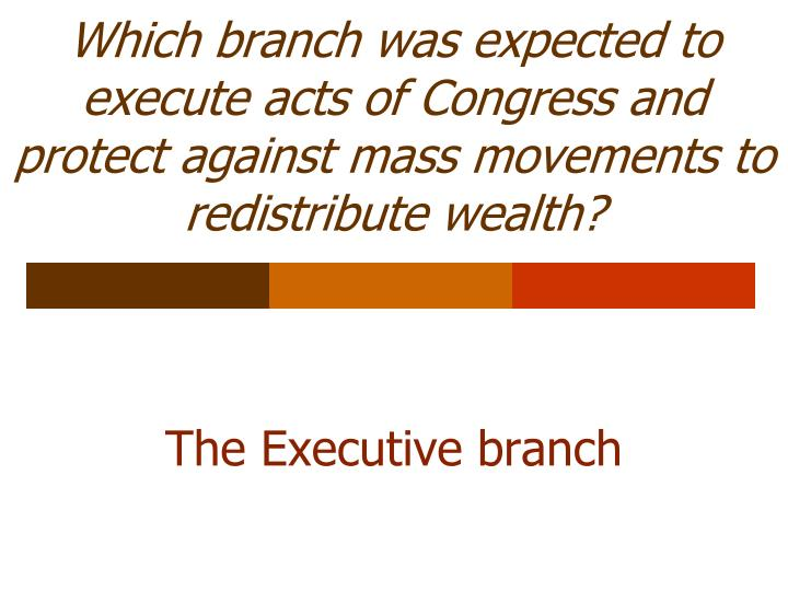 Which branch was expected to execute acts of Congress and protect against mass movements to redistribute wealth?