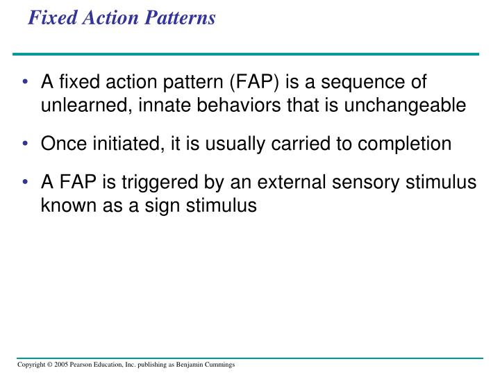 Fixed Action Patterns
