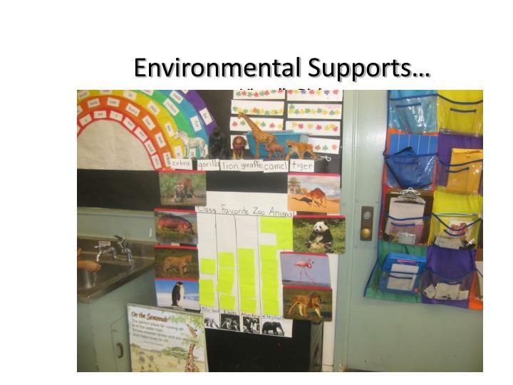 Environmental Supports…