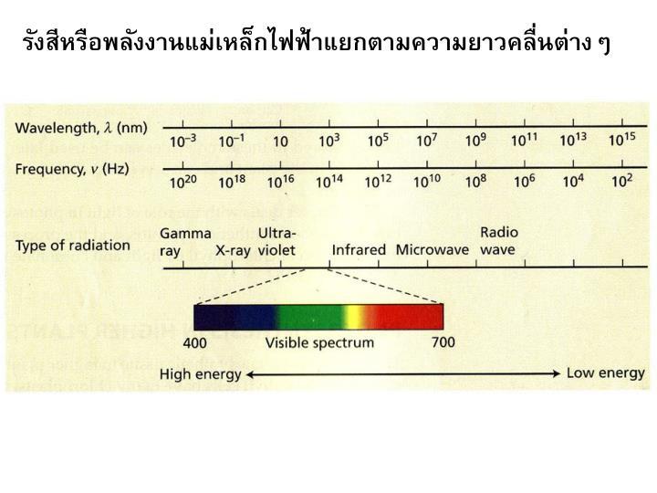 รังสีหรือพลังงานแม่เหล็กไฟฟ้าแยกตามความยาวคลื่นต่างๆ