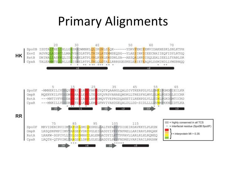 Primary Alignments