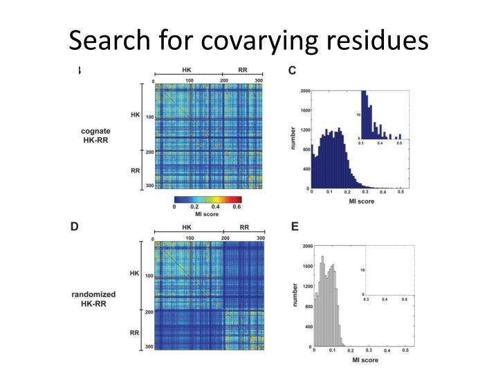 Search for covarying residues