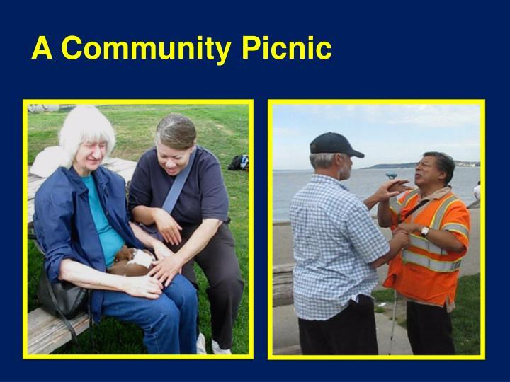 A Community Picnic
