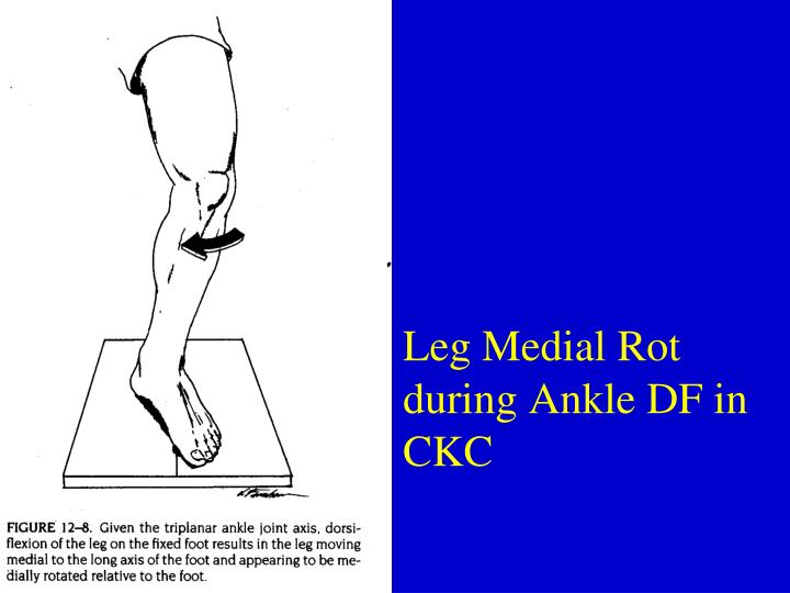 Leg Medial Rot during Ankle DF in CKC