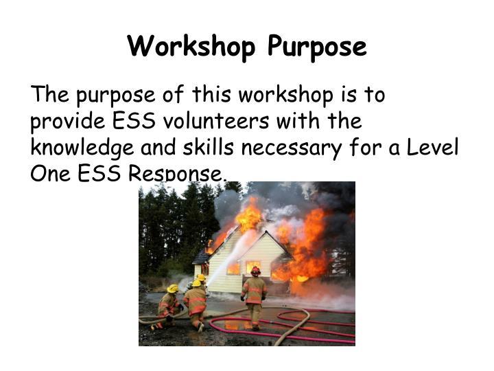 Workshop Purpose