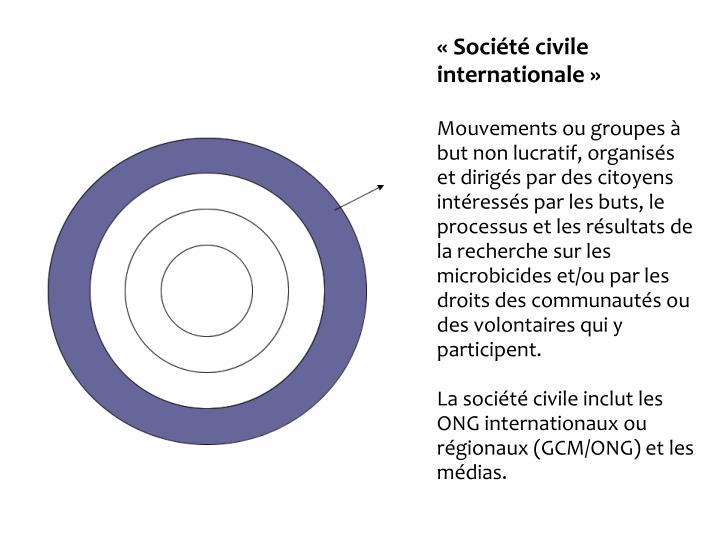 Socit civile internationale