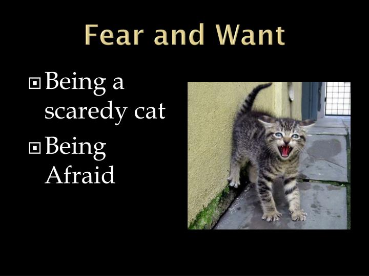 Fear and Want