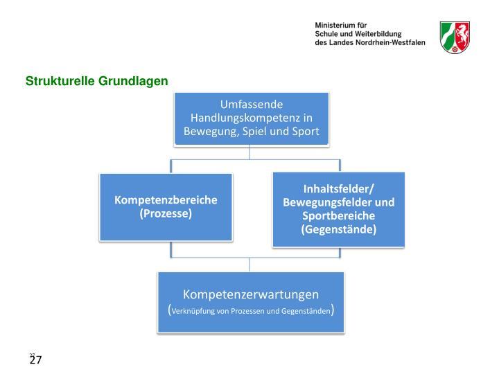 Strukturelle Grundlagen