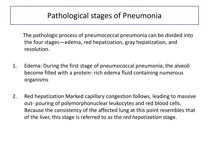 Pathological stages of Pneumonia