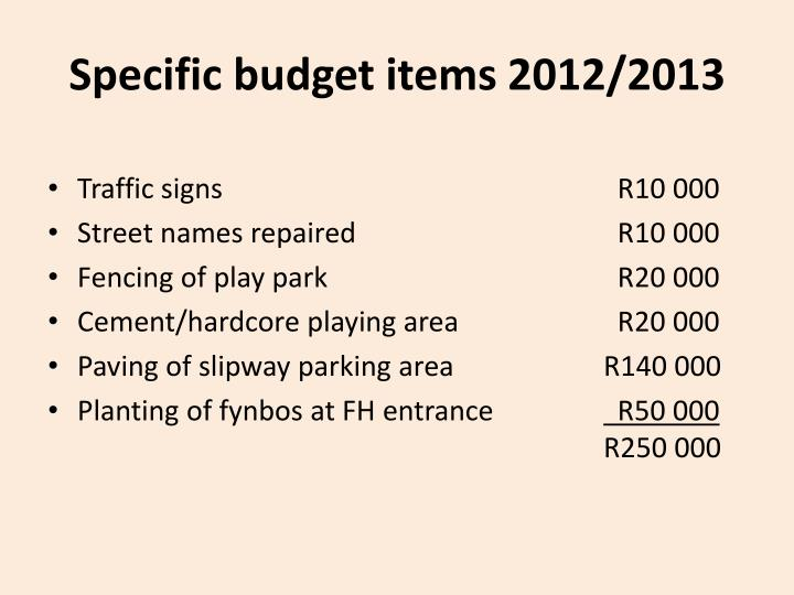 Specific budget items 2012/2013