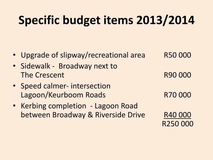 Specific budget items 2013/2014