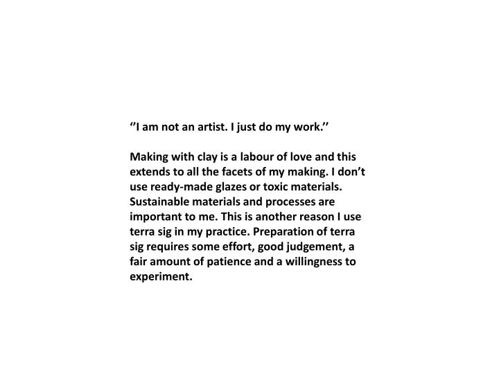 ''I am not an artist. I just do my work.''