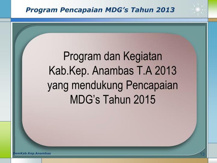 Program Pencapaian MDG's Tahun 2013
