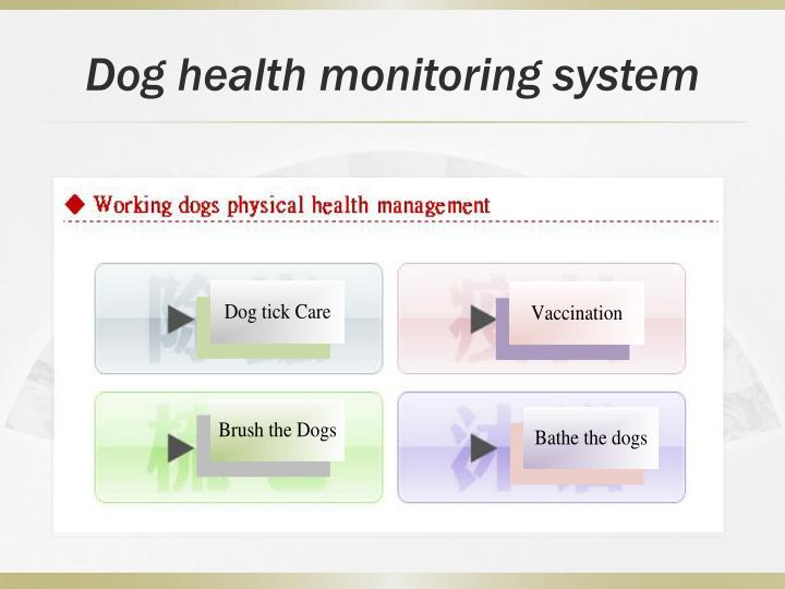 Dog health monitoring