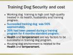 training dog security and cost