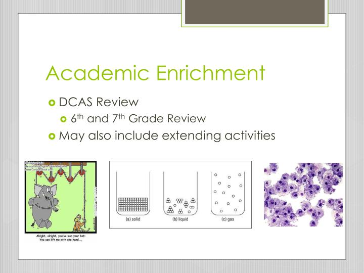 Academic Enrichment