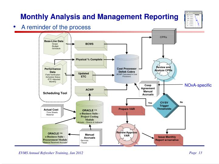 Monthly Analysis and Management Reporting