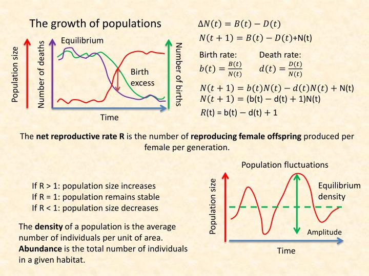 The growth of populations
