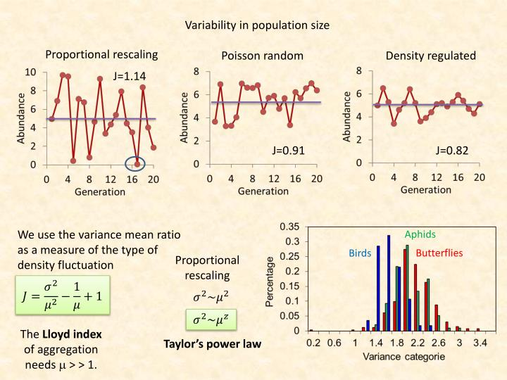 Variability in population size