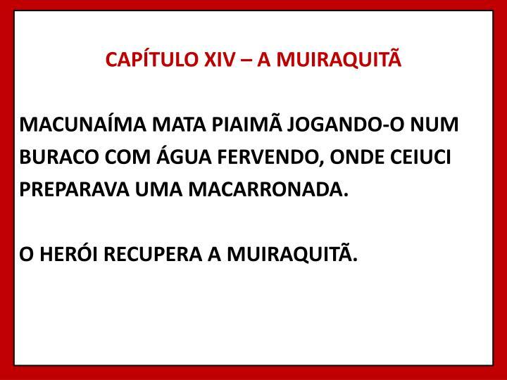 CAPÍTULO XIV – A MUIRAQUITÃ