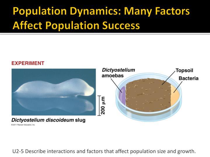 Population Dynamics: Many Factors Affect Population Success