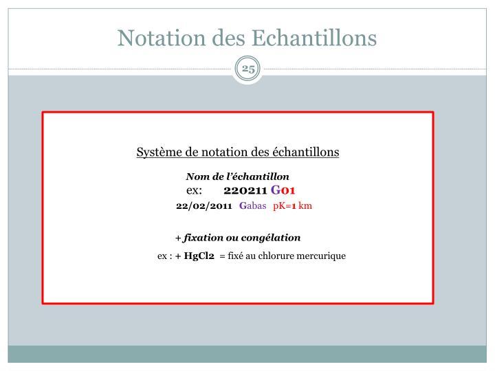 Notation des Echantillons