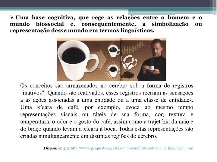 Uma base cognitiva, que rege as relações entre o homem e o mundo biossocial e, consequentemente, a simbolização ou representação desse mundo em termos linguísticos.