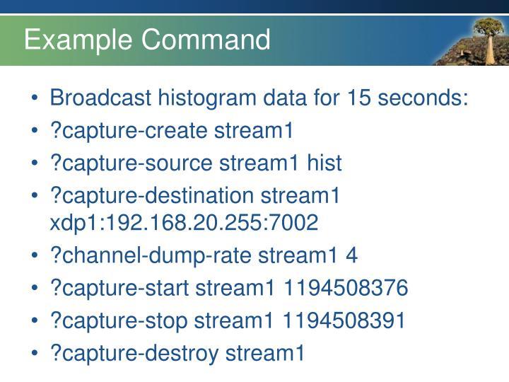 Example Command