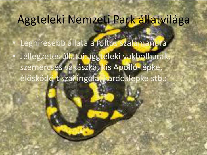 Aggteleki Nemzeti Park állatvilága