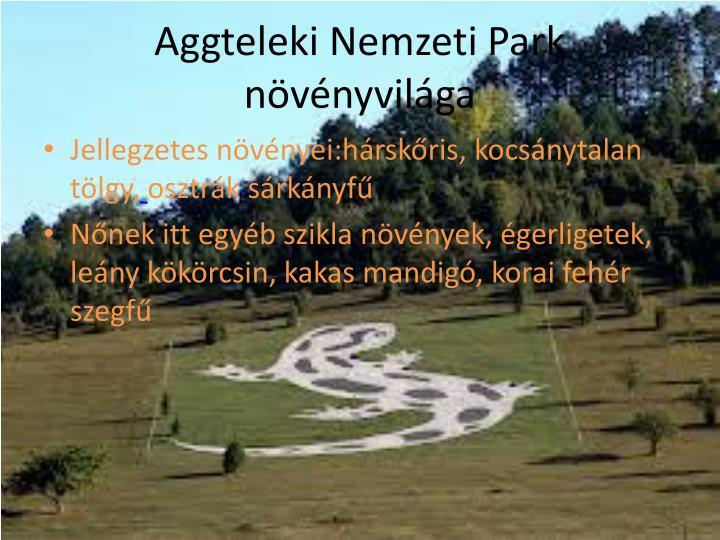 Aggteleki Nemzeti Park növényvilága
