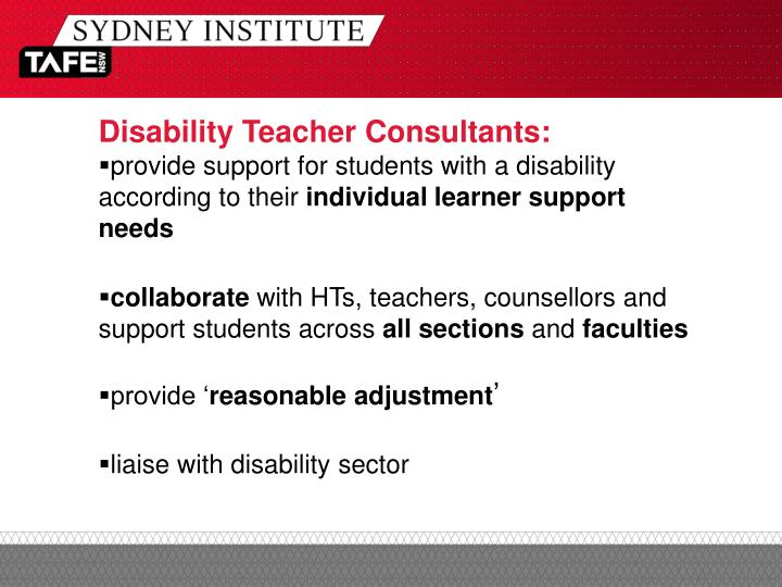Disability Teacher Consultants: