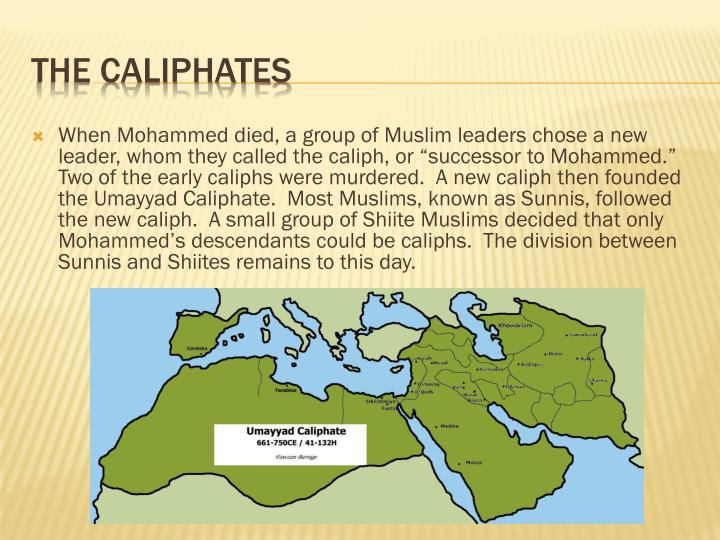 "When Mohammed died, a group of Muslim leaders chose a new leader, whom they called the caliph, or ""successor to Mohammed.""  Two of the early caliphs were murdered.  A new caliph then founded the Umayyad Caliphate.  Most Muslims, known as Sunnis, followed the new caliph.  A small group of Shiite Muslims decided that only Mohammed's descendants could be caliphs.  The division between Sunnis and Shiites remains to this day."