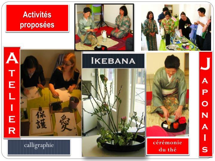 Activités proposées