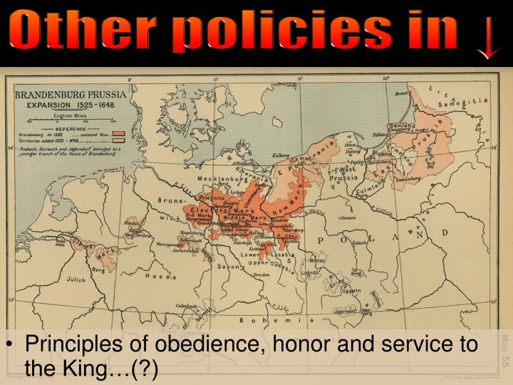 Other policies in ↓
