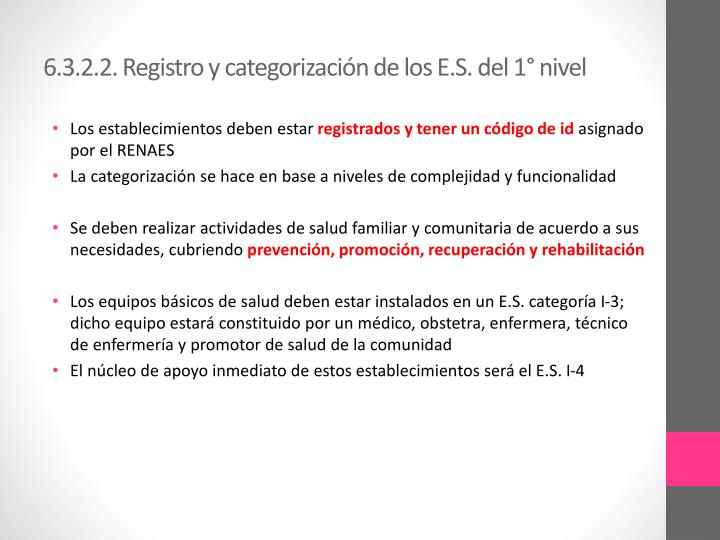 6.3.2.2. Registro y categorización de los E.S. del 1° nivel