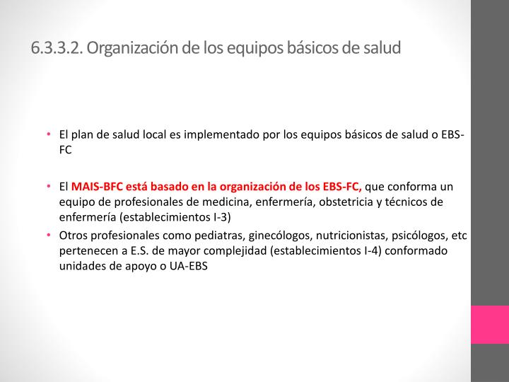 6.3.3.2. Organización de los equipos básicos de salud