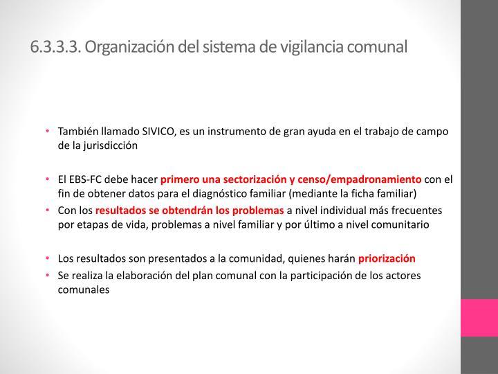 6.3.3.3. Organización del sistema de vigilancia comunal