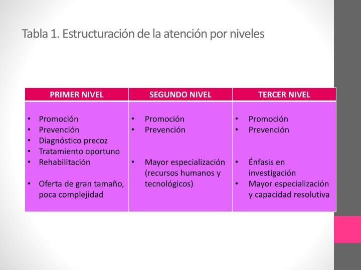 Tabla 1. Estructuración de la atención por niveles