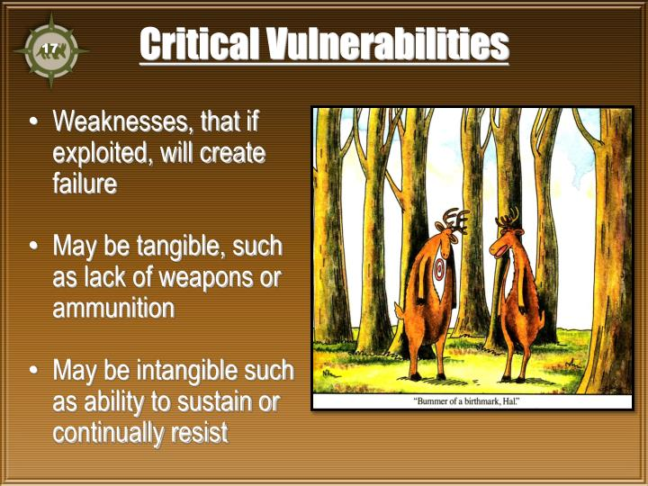 Critical Vulnerabilities