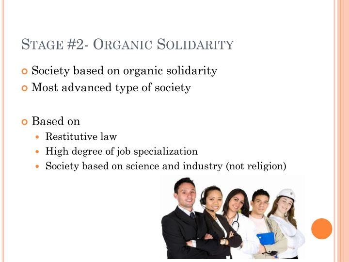 Stage #2- Organic Solidarity