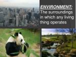 environment the surroundings in which any living thing operates