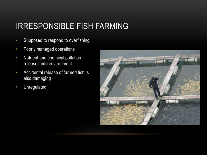 Irresponsible Fish Farming