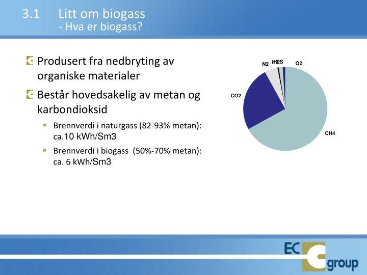 3.1Litt om biogass