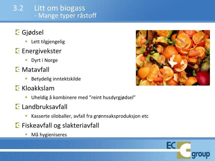3.2Litt om biogass