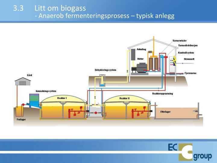 3.3Litt om biogass