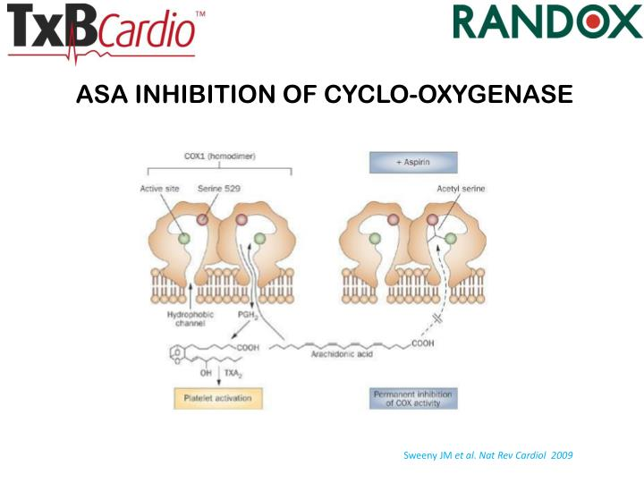ASA INHIBITION OF CYCLO-OXYGENASE