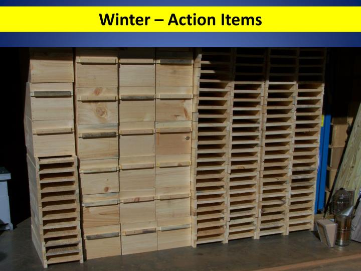 Winter – Action Items
