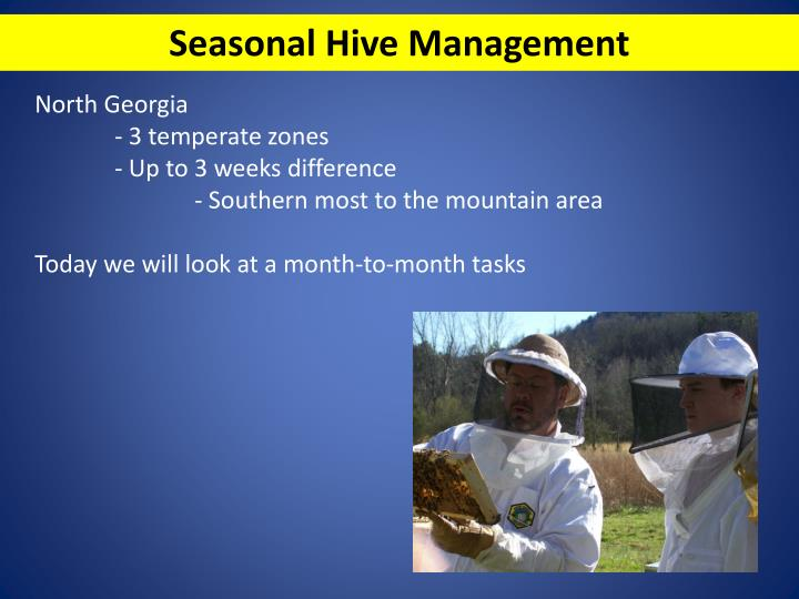 Seasonal Hive Management
